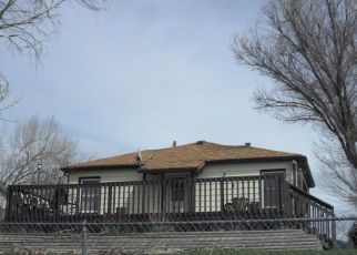 Foreclosed Home ID: 04299176116