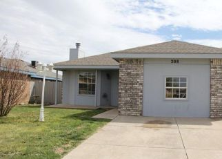 Foreclosed Home ID: 04486850610