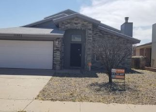 Foreclosed Home ID: 04499409511