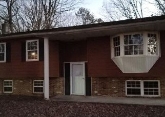 Foreclosed Home ID: 04518357137